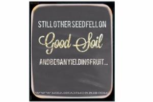 good soil|www.meaghanmorris.com